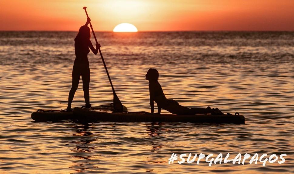 Image result for stand up paddleboarding gratitude wellness